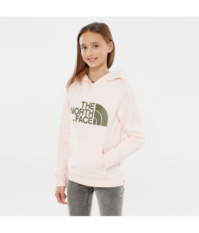 Tnf Sweat à Capuche Youth Drew Peak Purdy Pink Pour Enfant
