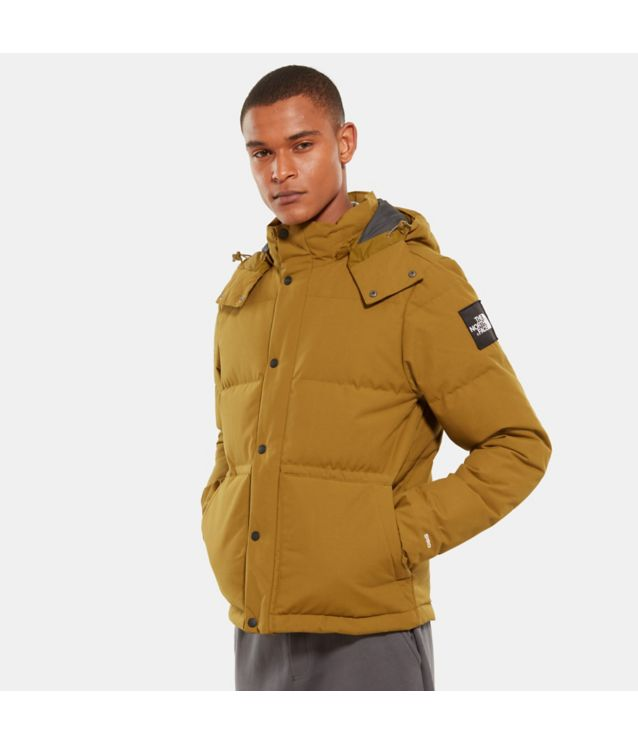Tnf Veste Box Canyon Fir Green Pour Homme